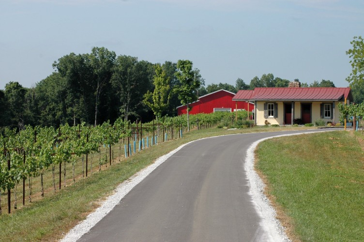 Photo of Amber Falls winery